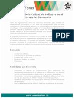Aplicacion Calidad Software Proceso Desarrollo