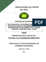 Tesis Rodríguez.pdf
