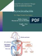 Mircrocirculación del cuerpo