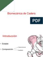 (INFERIOR 1 )Biomecánica de Cadera Osteología (1)