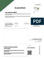 51070380884-841299589-ingresso.pdf