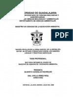 Tesis Gonzalez_Rodriguez_Gilberto.pdf