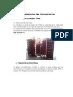PP2-procesos fruchincha.docx