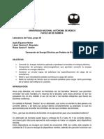 Proyecto Lf