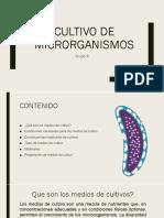 Cultivo de Microorganismos Final