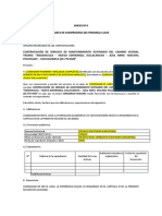 PROCESO N° MACHIN -ANEXO N°6 (1)