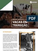 E-book - Vacas Em Transicao