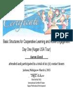 outcome 9 kagan certificate cl