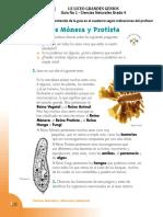Guia No 2 - Reinos Monera y Protista - 4 (V1)