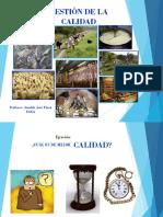 GESTION DE LA CALIDAD AV PARTE I AV.pdf