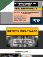 Exposicion Cirugia II