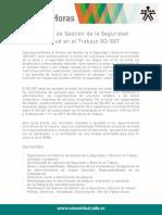 SG_SST.pdf
