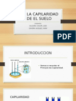 CAPILARIDAD (1).pptx