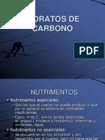 Hidratos de Carbono (1)