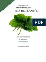 2019 EXPOCIENCIA - ARLETH BULLON - POMADA DE LLANTEN.docx