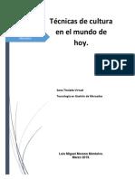 Técnicas de Cultura en El Mundo de Hoy.