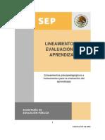 Lineamientos para la evaluación del aprendizaje