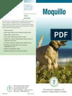 distemper_brochure_spanish.pdf
