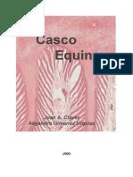EL CASCO EQUINO 2005