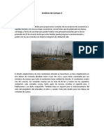 Análisis de Campo 2