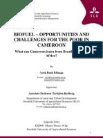 Biofuel Cameroon