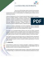 Perfil Del Juez Boliviano 2013