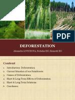 sustainabilityfinal-140326063917-phpapp02.pdf