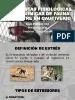 Respuestas Fisiologicas Animales de Fauna silvestre en Cautiverio