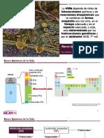 1 Las Bases químicas de la vida.pdf