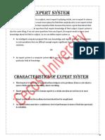 06 Expert System