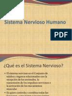 00-Sistema Nervioso Humano -