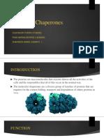 Molecular Chaperones