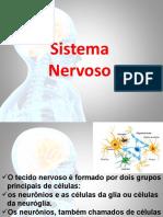 Sistema Nervoso e Neurônios