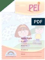 -Pei-Medio-Mayor-1-2.pdf