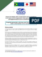 ICCR-FAQ-conservantes-cosmeticos.pdf