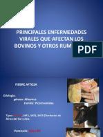 Programas Sanitarios en Bovinos (Enfermedades Virales)