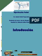 Hipertensión Portal Para Seminario