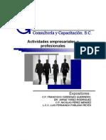 Act.empres Profesional 2009