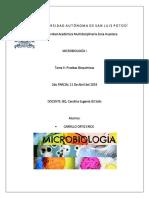 Tarea 2, Pruebas Bioquímicas