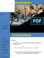 Aula Fotossintese e Quimiossintese