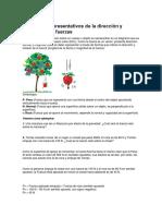 Diagramas Representativos de La Dirección y Sentido de Las Fuerzas Fisica 7 Basico