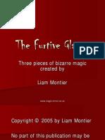 Liam Montier - The Furtive Glance - Version 2
