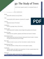 Dendrology Vocabulary