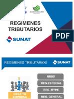 REGÍMENES TRIBUTARIOS.pdf