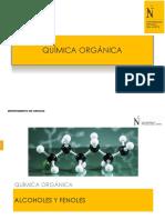 S-06 Alcoholes-Fenoles.pdf