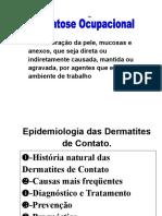 2.curso-dermatose