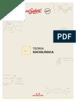 teoria sociológica.pdf