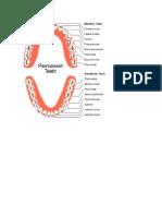 gambar gigi.docx