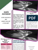 folleto maria.docx