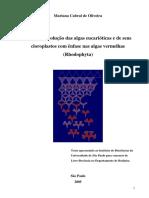 MCOliveira-LivreDoc-anexos1a12.pdf